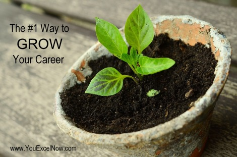 The #1 Way to Grow Your Career