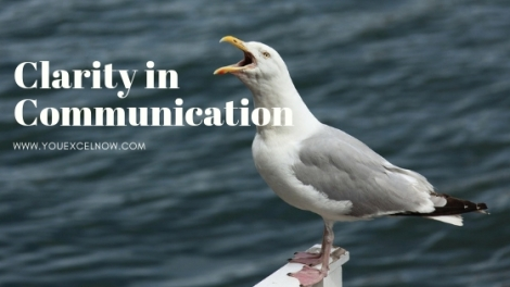 "Seagull screeching the words ""Clarity in Communication"""